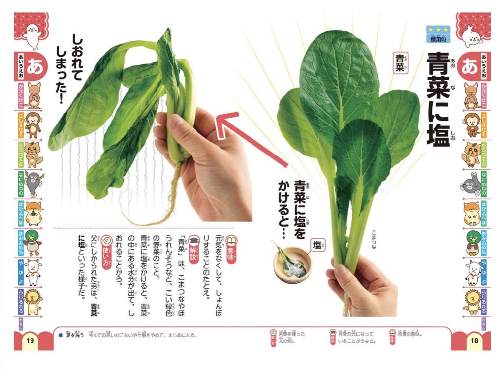 ことわざ・慣用句・四字熟語・故事成語が載っている「青菜に塩」